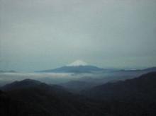 春の丹沢塔ノ岳・尊仏山荘への登山ルート