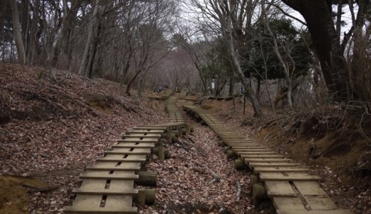 冬の丹沢・塔ノ岳~丹沢山~鍋割山:その4