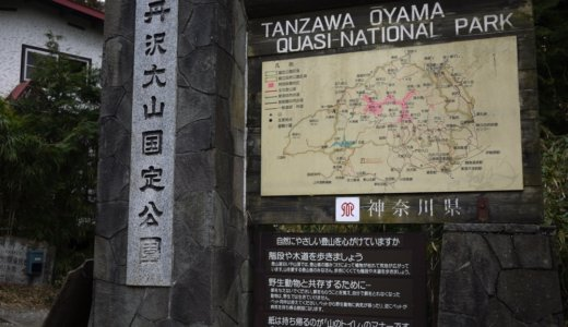 冬の丹沢・塔ノ岳〜丹沢山〜鍋割山:その2